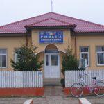 Primaria Florica Fabricat in Buzau