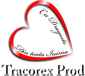 Tracorex Prod Fabricat in Buzau 4