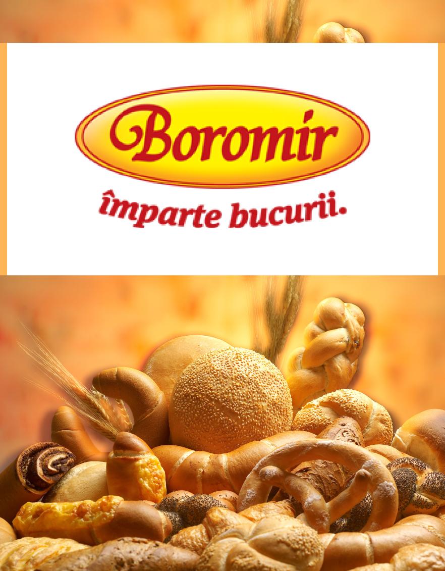 Boromir Fabricat in Buzau banner