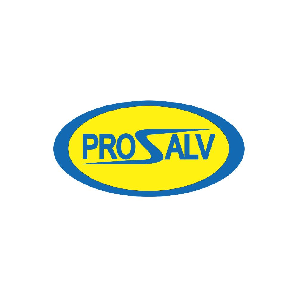 Fabricat in Buzau Prosalv logo